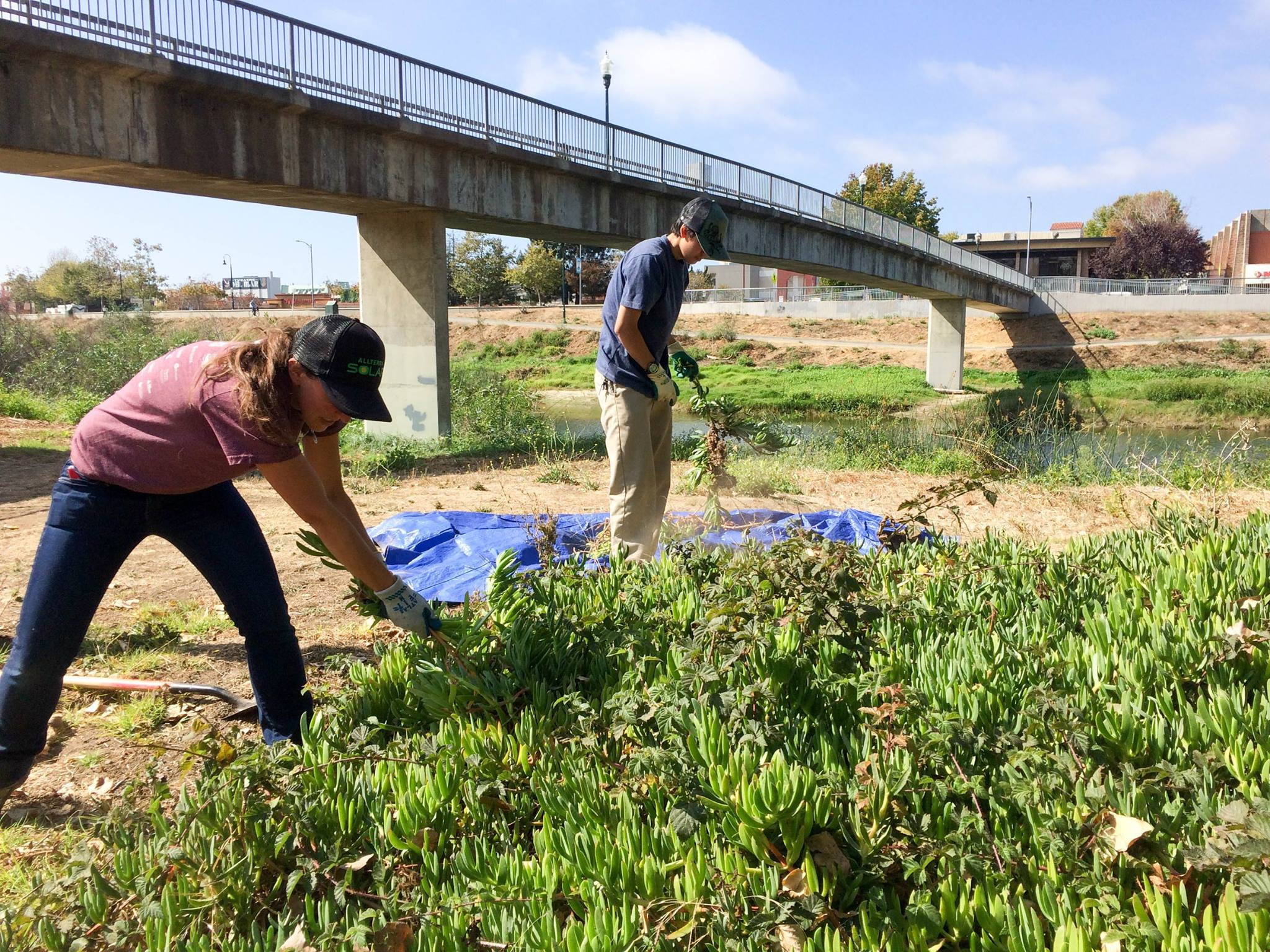 Volunteer Opportunities in Santa Cruz County River Restoration