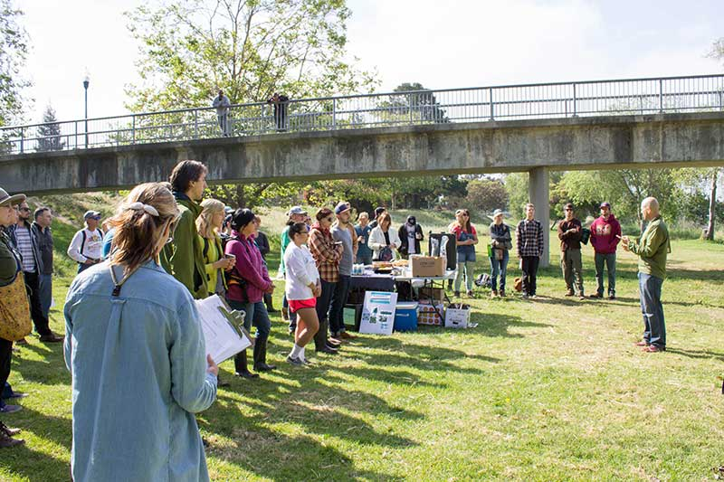 A healthy and thriving San Lorenzo River