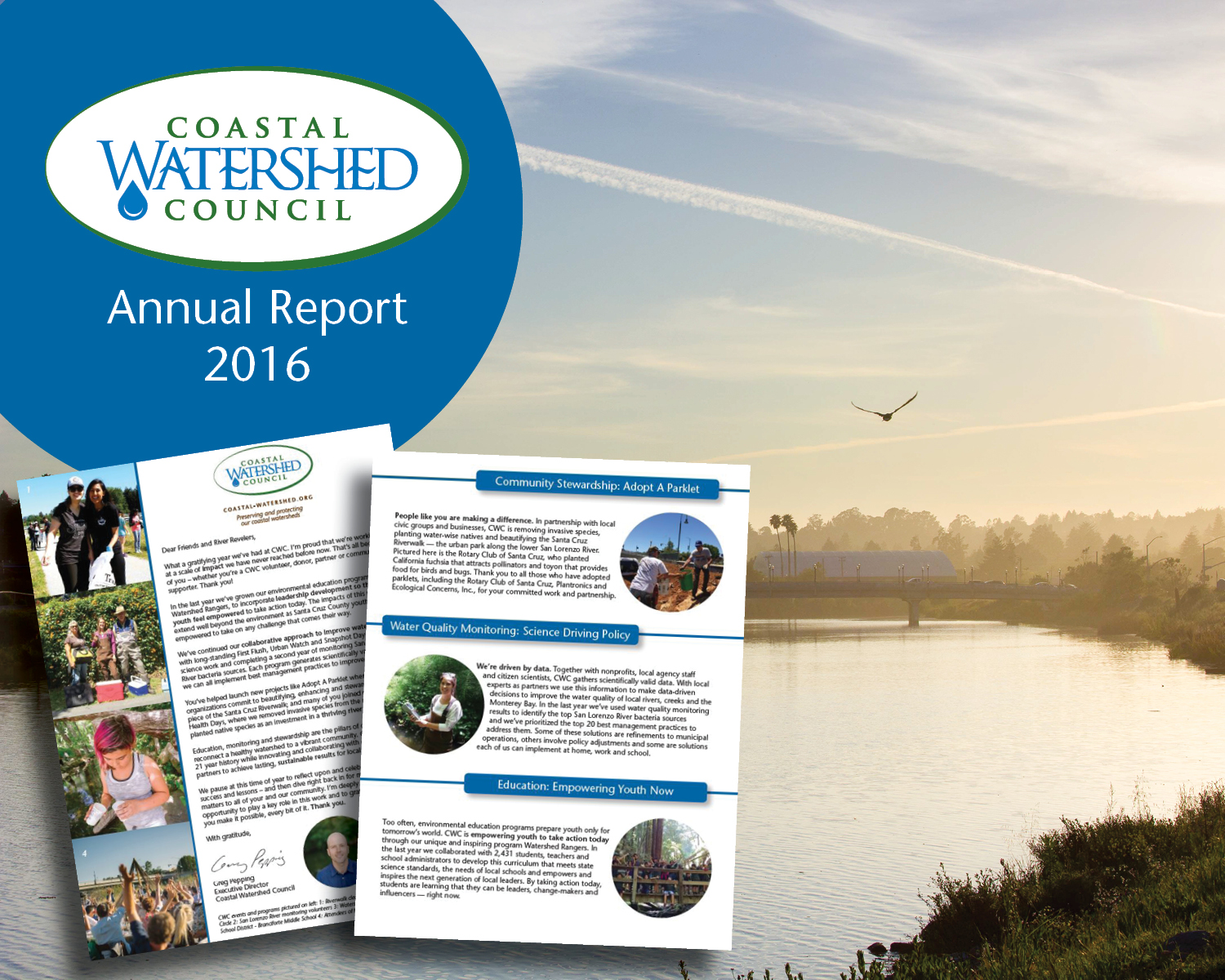 Annual report cover collage
