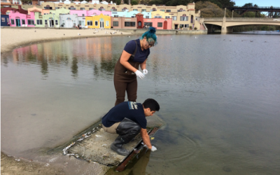 Urban Watch Results Show Water Quality Improvements in Soquel Creek