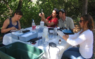 Field Volunteers Needed for Urban Watch Monitoring