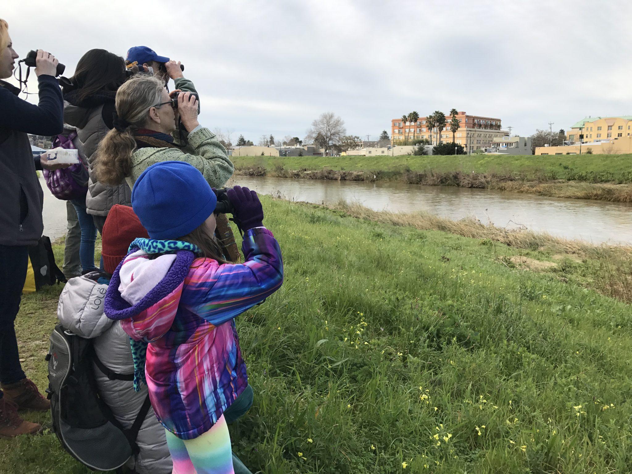 Exploring the San Lorenzo River Series