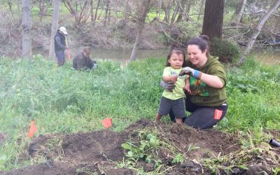 Tannery Residents Enhance San Lorenzo River Habitat