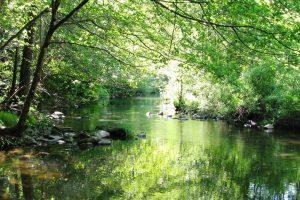 watershed health