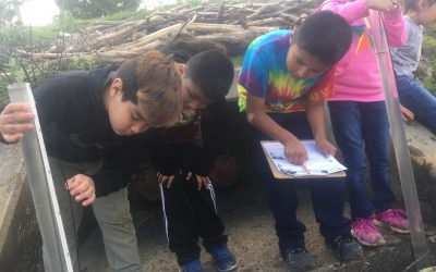 Watershed Rangers Head Back to School