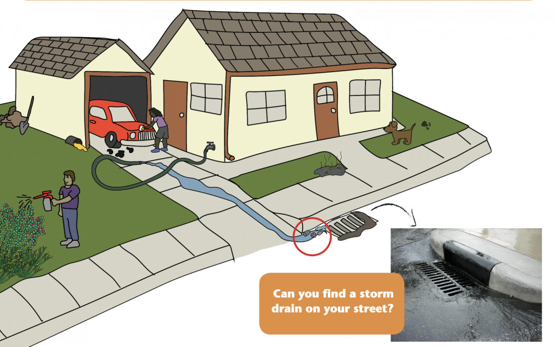 Activity: A Clean River Starts On Your Street