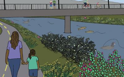 Activity: A Healthy River