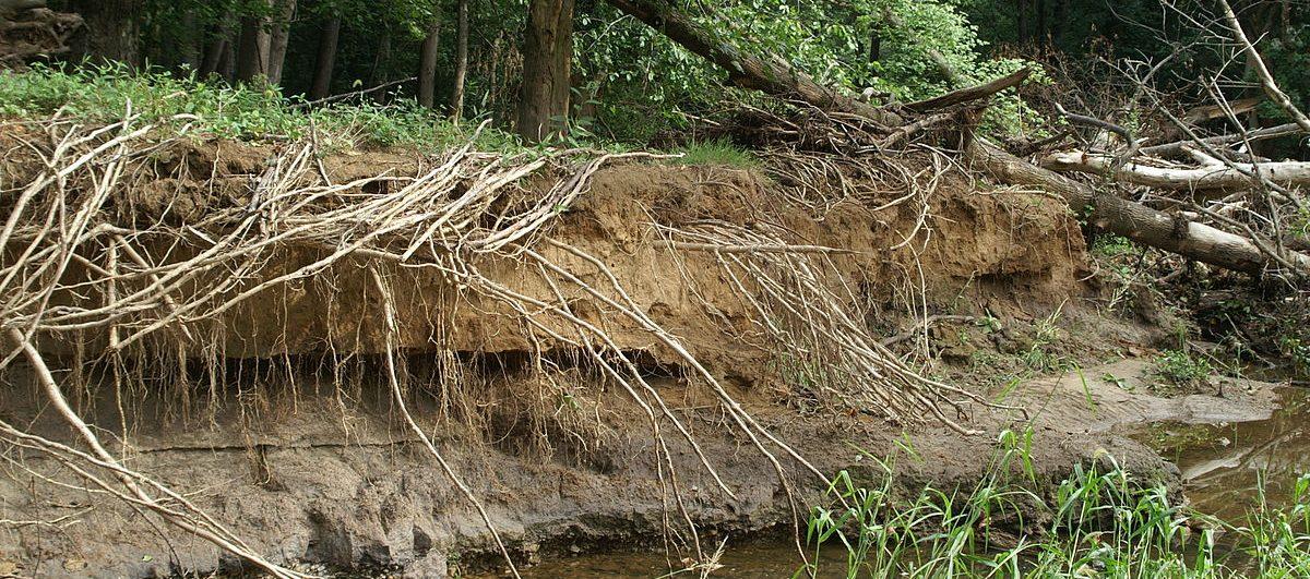 Let's Stop Erosion Design Challenge