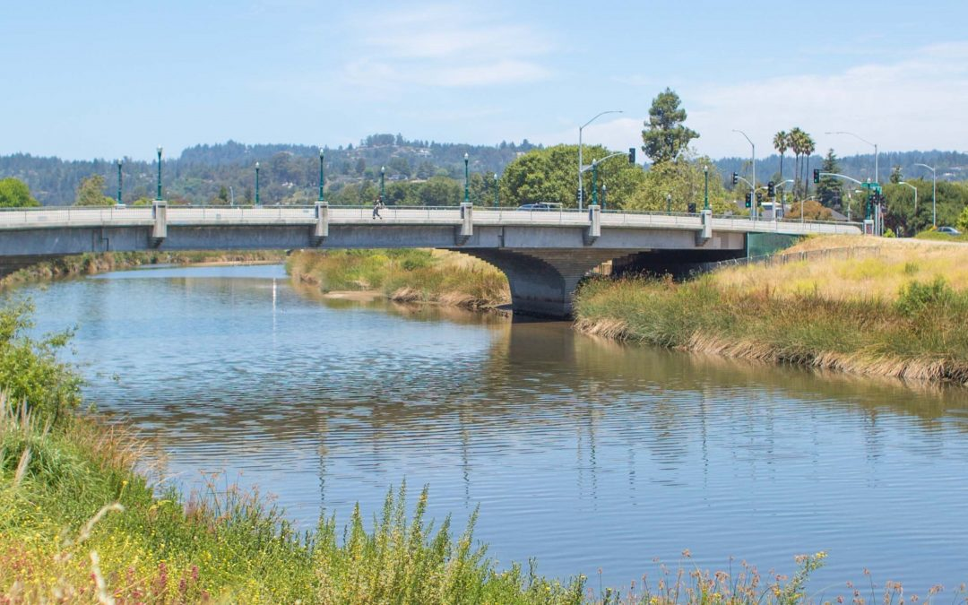 San Lorenzo River Action Projects Guide