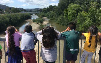 Las búsquedas del tesoro en el río San Lorenzo