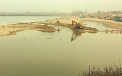 How Might We Manage the Lagoon Better?
